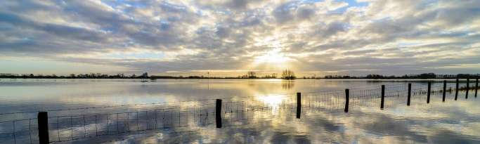 estran fluvial inondé