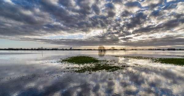 Des solutions fondées sur la nature pour éviter les inondations