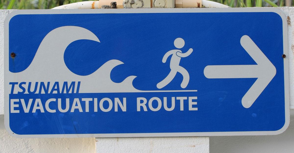 Système d'alerte aux séismes et tsunamis