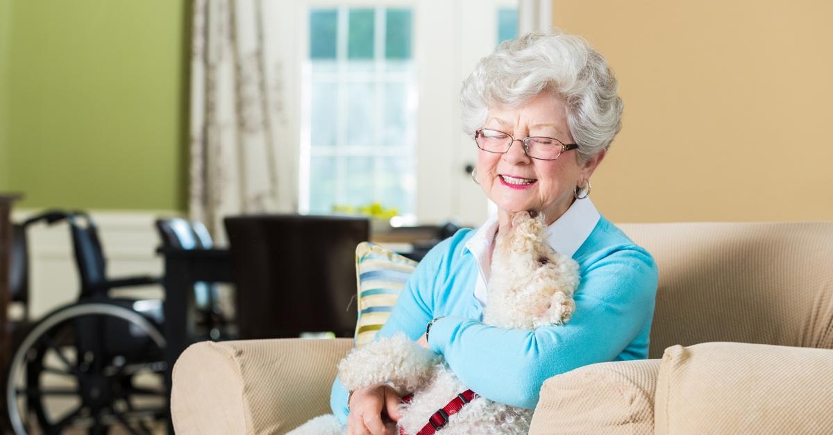 une femme senior assise sur un canapé avec un petit chien avec un fauteil roulant en arrière-plan